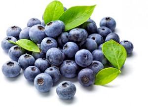 Extrait de myrtille bio est un puissant antioxydant qui renforce les veines