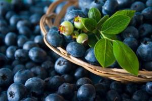 antioxydant : les qualités nutritives de la myrtille bio et recette